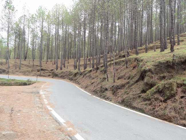 Kausani Road and way